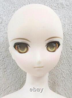 Dollfie Dream DD Doll Fate / hollow atara Saber Alter 2nd Ver VOLKS