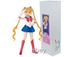 Sailor Moon Sister Sailor Moon Dollfie Dream DDS Volks Limited Doll Japan EMS