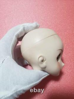 Sailor Moon x Dollfie Dream DDS Volks Doll Sailor Jupiter Head only