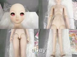 Sakura Miku Dollfie Dream DD Volks Sakura Miku Doll Cherry Blossoms Miku Limited