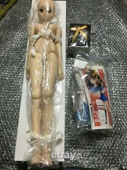 VOLKS Dollfie Dream Sister DD DDS HARUHI SUZUMIYA